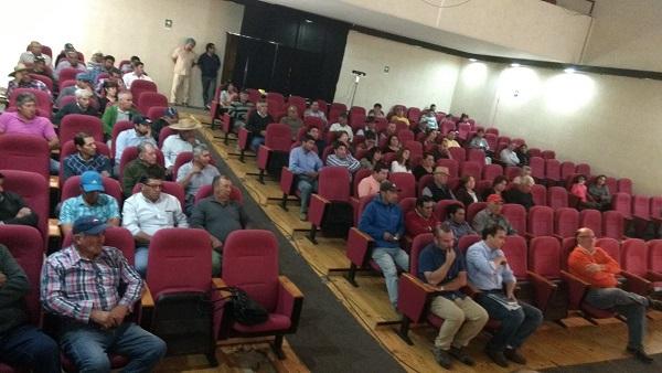 Prensa curic frambueseros afectados con programa de for Viveros en curico